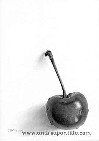 Graphite pencil drawing cherry